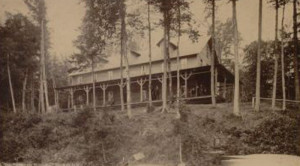 1900s-Under-the-Hemlocks-L